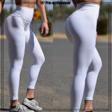 Promotional Price Body Support Workout Clothes Women Yoga Tights