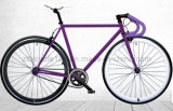 700c Fashion Men Fixed Gear Bike (ZLF-2004S)