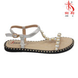2018 Women Flat Sandal for Fashion Lady (FSA 102)