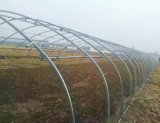 Cheap Large-Scale Industry Dome Greenhouse Plastic Film