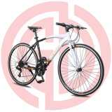 New Stylish Personalized Urban Road Racing Bike