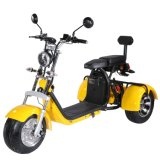 Best Price EEC Scooter Three Wheel Bicycle with 2 Seat Hot Selling 3 Wheel Electric Scooter
