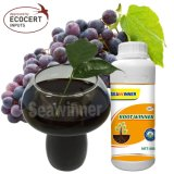 High Quality Seaweed Fertilizer for Fruits with Lowest Price