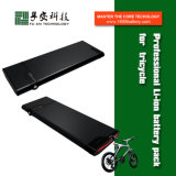 Factory Sale 48 Volt Lithium Ion Battery for Electric Bicycle