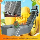 Mango Fruit Surf Washer Machine