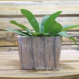 Simple Modern Designed Square Magnesia Flower Pot
