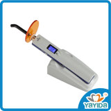 Economic Price Dental Equipment Dental Curing Light