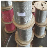 Factory for 316 7X7 7X19 Stainless Steel Cable Steel Wire Rope 2mm