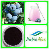 Fruit Extract Blueberry Juice Powder Blueberry Juice Concentrate