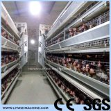 China Factory Supplier Automatic Poultry Farm Layer Chicken Equipment Price