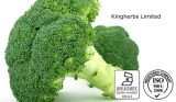 Sulforaphane 0.1% 4% 5% 10% 50% Broccoli Extract