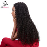 Alinybeauty Deep Wave Virgin Human Hair Lace Front Wig