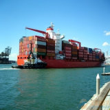 Consolidation Ocean Logistics Service From Shenzhen to Singapore