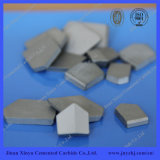 Carbide Product Cemented Carbide Coal Mine Tips