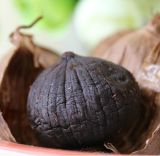 Hot Sale Solo Black Garlic as Fermened Health Food
