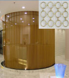 Beautiful Ring Curtain Mesh for Home Decorative/Decorative Ring Mesh