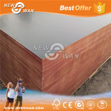 Film Faced Shuttering Marine Plywood (BFP-0006)