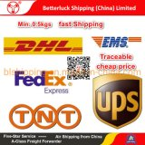 FedEx Guangzhou agent Express Courier Services from China to Israel Wig Dropshipping