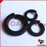 Fastener / Flat Washer Plain Washer Spring Washer Lock Washer Structural Washer