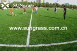 50mm Synthetic Sports Turf Artificial Grass for Football