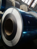 409 Stainless Steel Coil-Cold Rolled with Paper Cover