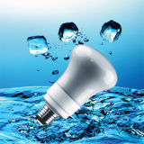 R63 CFL Energy Saving Light with CE (BNF R63-A)