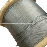 7*7 2.38mm Hot-Dipped Galvanized Steel Wire Rope