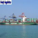 Reliable Air & Sea Shipping Agent Door to Door From Yantian/Foshan /Guangzhou/Zhongshan to Long Beach & Los Angeles