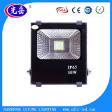 High Lumens Waterproof IP65 30W LED Flood Light with Ce/RoHS