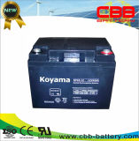 12V45ah-Valvue Regualted Lead Acid UPS Battery NP45-12