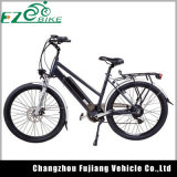 2018 Hot Sell 26 Inch Mountain Electric Bicycle with Mag Wheel