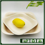 Cheap Round Green Living High Grade OEM Service Not Polluted Design Plates