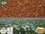 High Quality Flaxseed Extract Lignans 20%, 40%, 60%, 80%