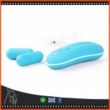 Bullet Vibrators Wireless Remote Control Egg Adult Product for Women