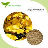 100% Natural Plant Ginkgo Biloba Leaf Extract 24%/6%