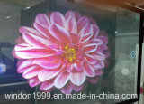 3D Transparent Hologram Projector Screen Film for Window Advertising