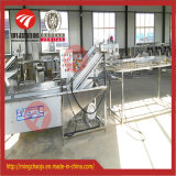 Industrial Automatic Vegetable Cleaning Machine Fruit Washing Equipment Line