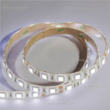 Outdoor Use IP65 5050 LED Strips Lighting