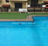 Solar Swimming Pool Light RS9999