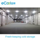 Large Scale Fresh Keeping Cold Room for Vegetables and Fruits