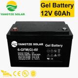 Yangtze Best Price 12V 24V 60ah Battery Power Bank