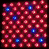 100-240V LED Hydroponic Greenhouse Systems