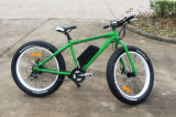 Best Quality and Best Price Fat MTB E-Bike for Promotion