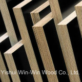 Russia Birch Core Formply Concrete Plywood for Australia Market