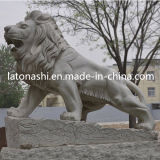 Natural Stone Grey Granite Animal Carving Statue / Sculpture for Garden