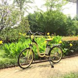 Best Quality City Electric Pedal Bike with Low Step