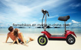 3 Wheel Electric E Bike with Lithium Battery