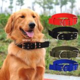 Pet Supplies Cheap Nylon Strong Dog Collar of Different Colors