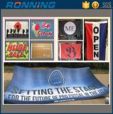 Factory Cheap Polyester Printing National Country Advertising Promotional Small Big Giant Custom Banner and Flags