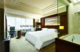 W Contemporary Sheraton Boutique Hotel Furniture